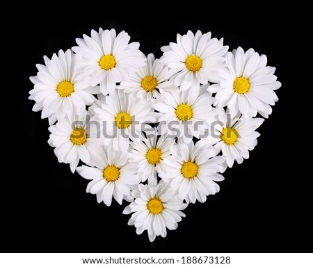 heart shaped flower stock images, royaltyfree images  vectors, Beautiful flower