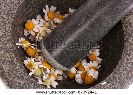 chamomile flowers in mortar