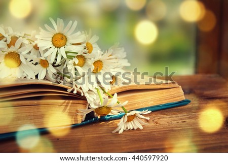 Chamomile flowers in open book.