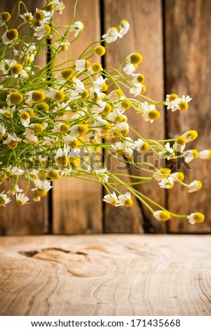 Chamomile flowers on a wooden surface. Chamomile aromatherapy. - stock photo