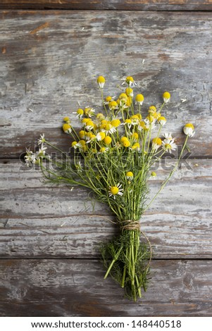Chamomile, Matricaria chamomilla, on wooden table - stock photo