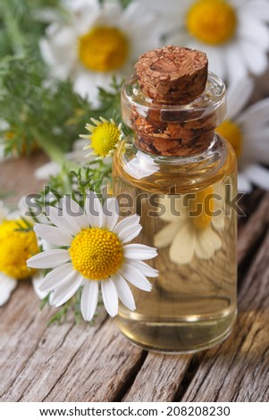 chamomile oil in a glass bottle macro on wooden table vertical  - stock photo