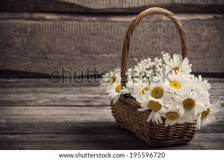 chamomiles in basket on wooden background - stock photo