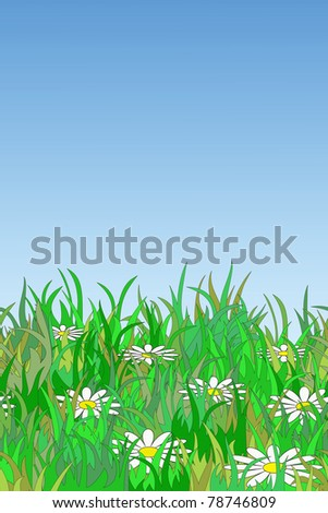Chamomiles in grass with free space for your text (seamless)