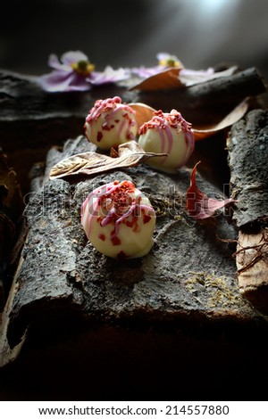 Champagne and strawberry truffles in a woodland setting. Ideal concept image for Valentines or Christmas. Copy space. - stock photo