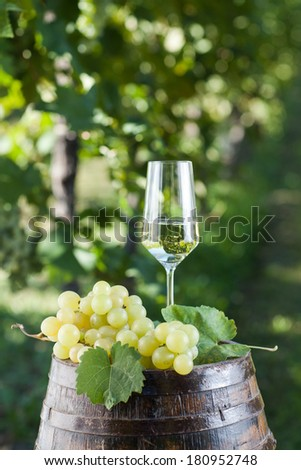 Champagne Flutes and old barrel in a vineyard  - stock photo