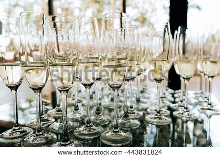 Champagne glasses closeup, Wedding reception alcohol  drink table - stock photo