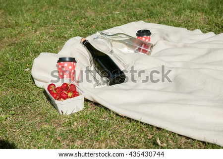Champagne, water bottle, and strawberries on white blanket - stock photo