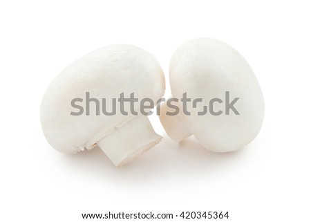 Champignon mushrooms. Two beautiful mushroom isolated on white background. - stock photo