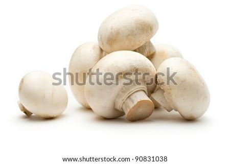 Champignon on a white background - stock photo