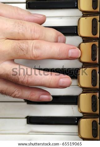 Changing accordion's accord - stock photo