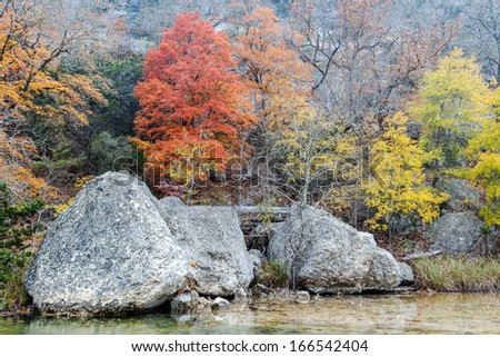 Changing colors at Lost Maples - stock photo