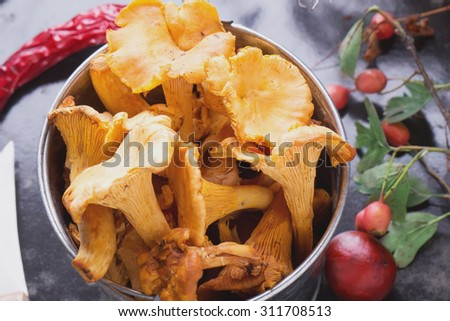 Chanterelle mushrooms with nuts, berries, autumn leaves and vintage knife in small tin bucket on black background