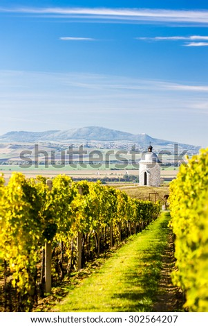 chapel with vineyard near Velke Bilovice, Czech Republic
