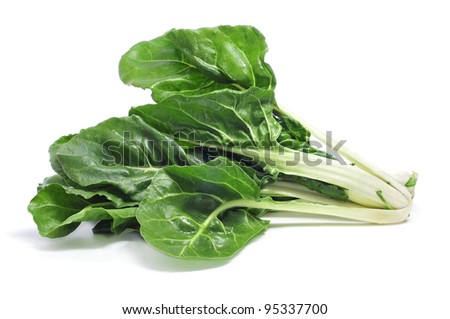 chard leaves on a white background - stock photo