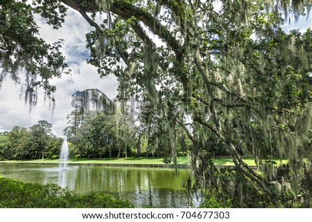 Charleston, South Carolina   August 22, 2017: A View Of The Gardens At