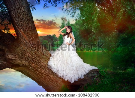 charming bride in a white wedding dress stay on the tree over the lake against the sky at sunset - stock photo