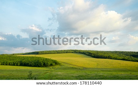 Charming green landscape with cloudscape - stock photo