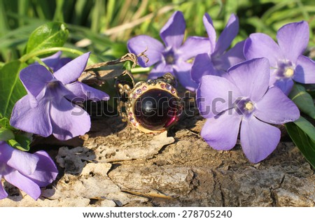 charming Handmade glass ring with wood violet in spring on the nature background - stock photo