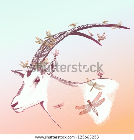 Charming horn Oryx