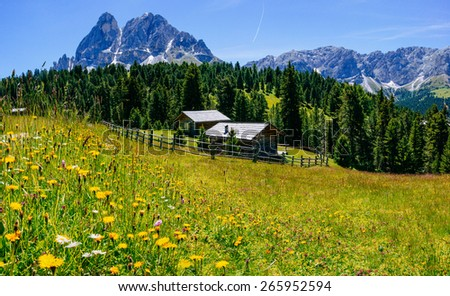 Charming house in summer sunny day in Alps - stock photo