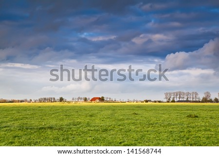 charming house on farmland and stormy sky, Netherlands - stock photo