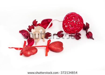 Charming little golden mouse sits amid dry red flowers and shiny decorative hearts. He has a long tail and a tiny pink paws. - stock photo