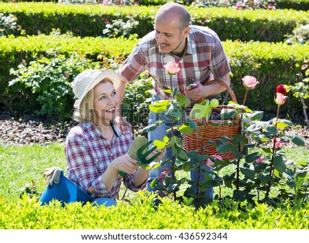 Charming senior couple looking after flowers in the garden - stock photo