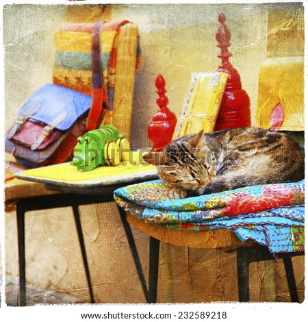 charming street' pictures - cat with old toys - stock photo