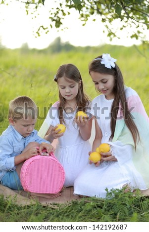 Charming young children in summer clothes on a picnic in the summer field with wild flowers