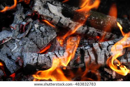 Charred wooden logs in flame of fire detailed stock image