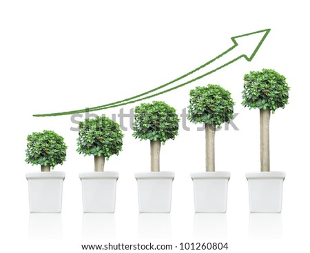 chart up trees on isolated background with shadow reflect - stock photo