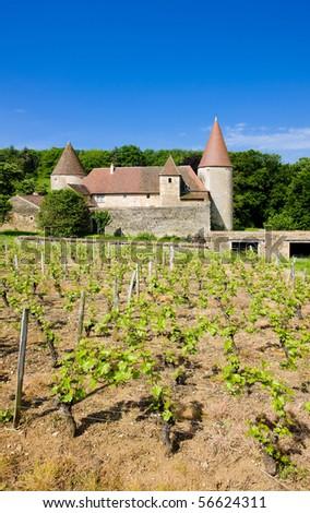 Chateau de Nobles, Burgundy, France - stock photo