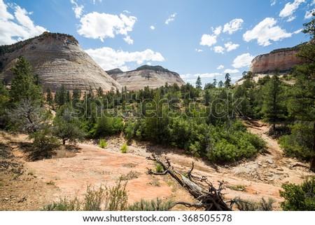 Checkerboard Mesa in Zion National Park, Utah - stock photo