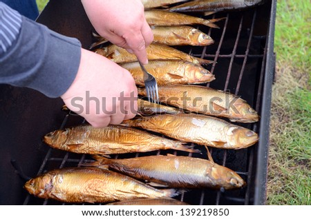 checking readiness of fish in the smokehouse don herring golden color on a metal grid