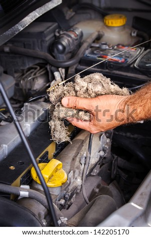 Checking the Oil - stock photo