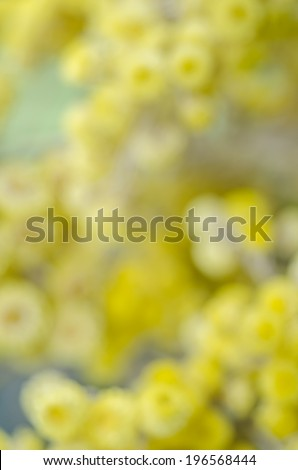cheerful abstract floral background - stock photo