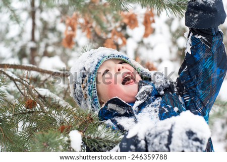 cheerful boy playing among winter firs in the forest - stock photo