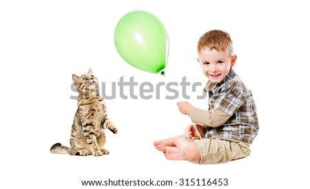 Cheerful child and curious cat Scottish Straight isolated on white background