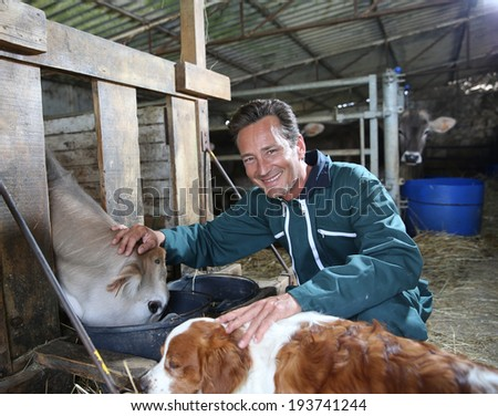 Cheerful farmer petting cows in barn - stock photo