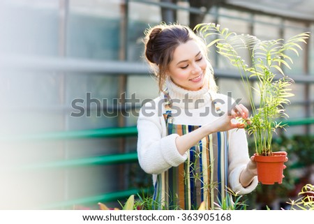 Cheerful pretty young female gardener in white sweater and striped apron taking care of small palm in pot in greenhouse - stock photo