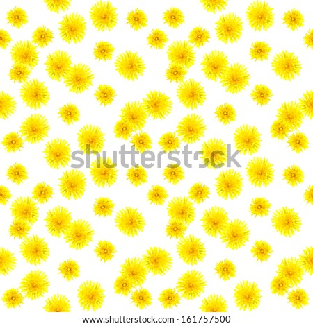 Cheerful seamless background with yellow dandelions - stock photo