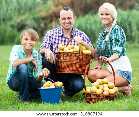 Cheerful young a married couple and their son posing with baskets full of apples in countryside - stock photo