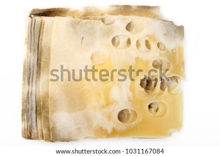 Cheese rot on white background