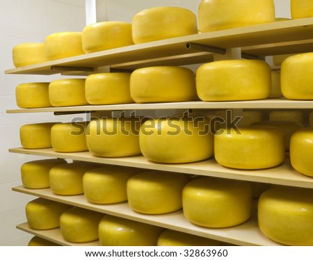 Cheese Wheels Ripening in an Aging room - stock photo