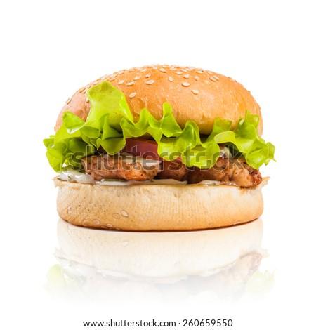 cheeseburger on a white background - stock photo