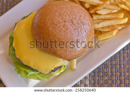 Cheeseburger on a whole wheat bun with steak fries on the side - stock photo