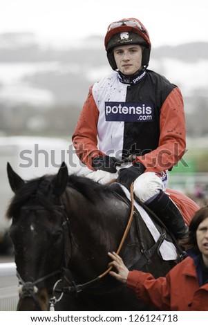 CHELTENHAM, GLOUCS-JANUARY 26:  Jockey Harry Derham returns with Poquelin after the third race at Festival Trials Day, Cheltenham Racecourse, Cheltenham UK on Jan 26, 2013. - stock photo