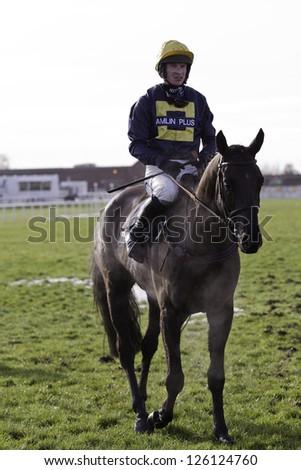 CHELTENHAM, GLOUCS-JANUARY 26: Jockey Tom O' Brien returns with Ballygarvey in the second race at Festival Trials Day, Cheltenham Racecourse, Cheltenham UK on Jan 26, 2013. - stock photo