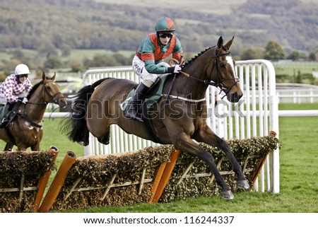 CHELTENHAM, GLOUCS, OCT 20 2012, Daryl Jacobs takes Brass Tax over hurdles at the first race at Cheltenham Racecourse, cheltenham uk Oct 20 2012